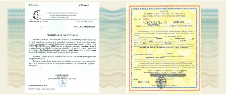 certificate ciumbrud - pomi