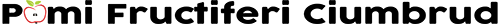 logo pomi decupat negru 500